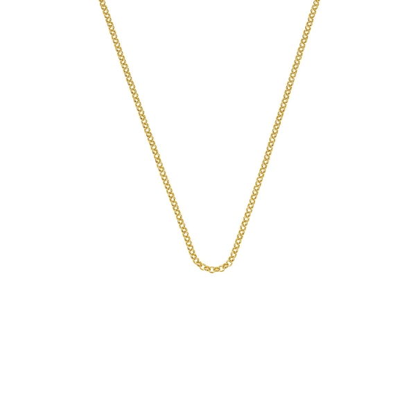 emozioni-by-hot-diamonds-30-yellow-gold-plated-belcher-chain-ch011