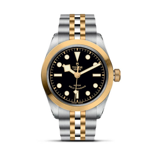 tudor-steel-and-gold-black-bay-36-m79503-0001